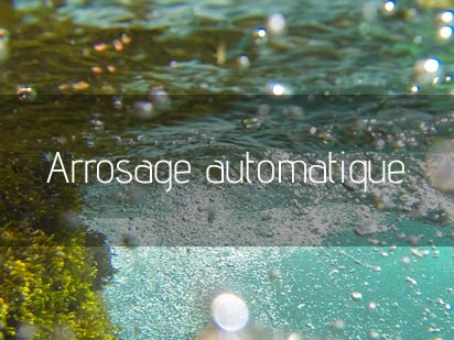 Arrosage automatique