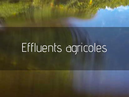 Effluents agricoles